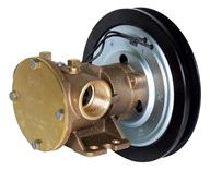"1"" bronze pump, <b>80-size</b>, foot mounted with BSP threaded ports"