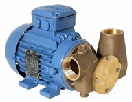 "Utility 80' 1 1/2"" Self-Priming Flexible Impeller Pump 400volt/3 phase/50Hz a.c."