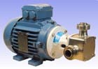 "1"" P40 'Pureflo' Hygienic Self-Priming Flexible Impeller Motor Pump Unit"