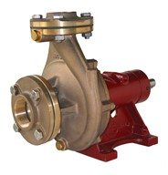 "1½"" Bronze End Suction (Non-self-priming) Centrifugal Pump"